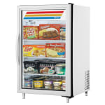 "True GDM-07F-HC~TSL01 24"" One-Section Display Freezer w/ Swinging Door - Rear Mount Compressor, White, 115v"