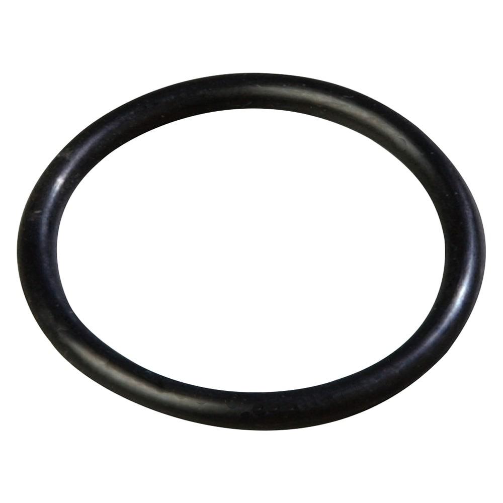 Carlisle 38550COR Cylinder O-Ring - (38550R) Pump