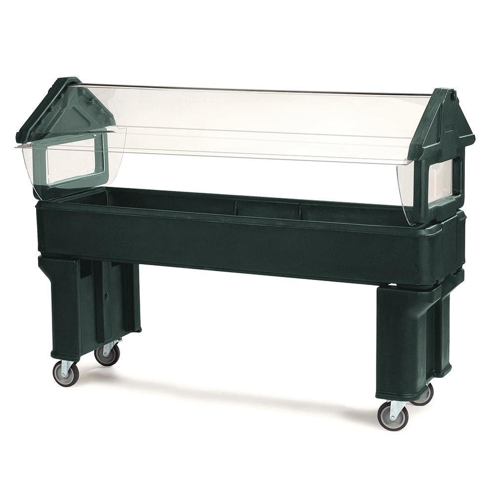 Carlisle 660608 Portable Food Bar - (5)Full-Size Pan Capacity, Polyethylene, Forest Green