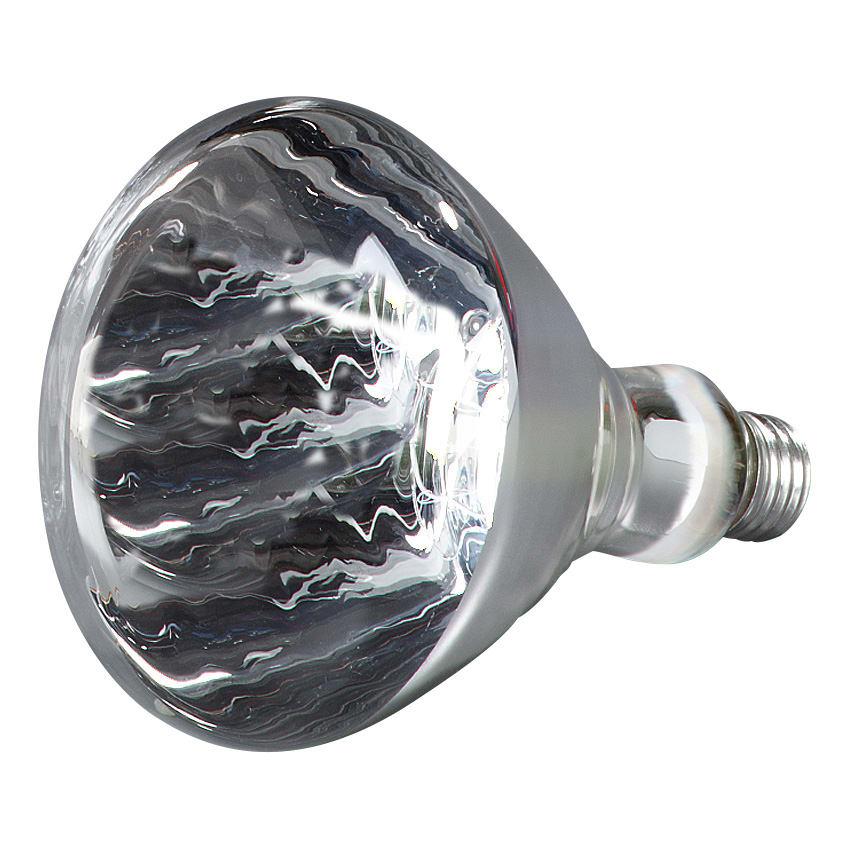 Carlisle HLRP602 Heat Lamp Bulb - 250-watt, White
