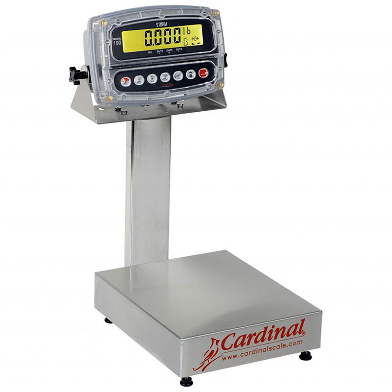 Detecto EB-300-190 Digital Bench Scale, LCD Display, lb/kg/g/oz, 300 x .1-lb, 24 x 20""