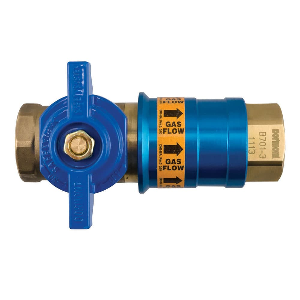 "Dormont CF100 1"" Quick Disconnect Female Coupler"