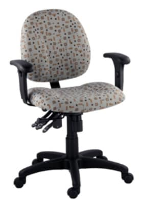 Ergocraft E-21724 Array Office Chair w/ Small Back & 4-Paddle Executive Control, Height Adjust