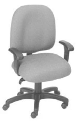 Ergocraft E-50152 Palisades Task Chair w/ Medium Back & 2-Paddle Deluxe Task Control