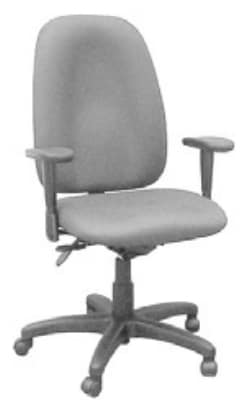 Ergocraft E-50182 Palisades Task Chair w/ High Back & 2-Paddle Deluxe Task Control
