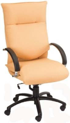 Ergocraft E-66581 Executive Conference Chair w/ High Back & 1-Paddle Task Control, Manual