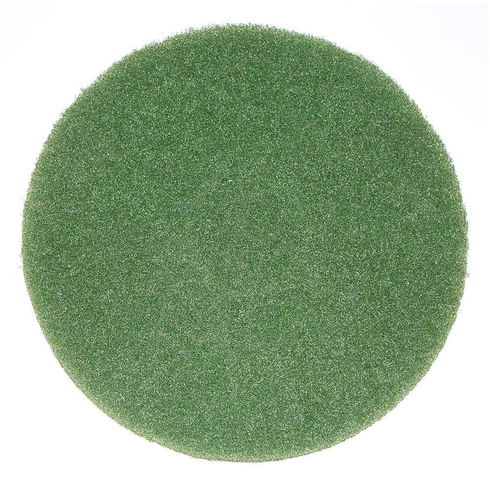 "Bissell 437.056 12"" Cleaning Pad for BGEM9000, Green"