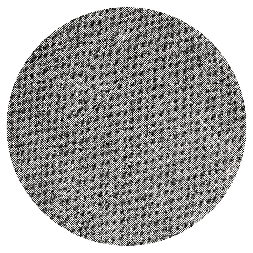 """Bissell SS17120 17"""" Sand Screen for BGLB9000, 120 Grit"""